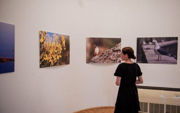 """Izložba """"Ljepote Skadarskog jezera"""" otvorena i u Baru"""