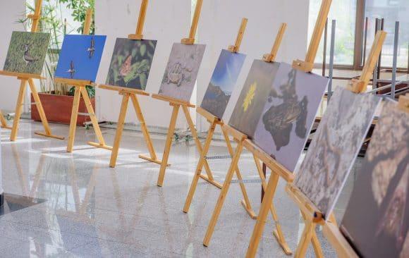 """Izložba """"Ljepote Skadarskog jezera"""" ponovo u Tuzima"""