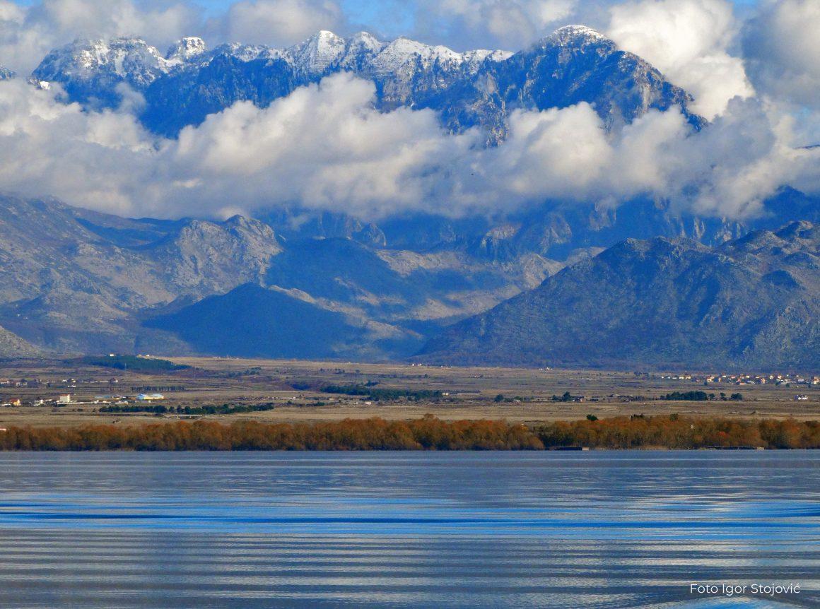 "Konkurs za izradu umjetničkog djela ""SOS Skadar lake-Keeping the Montenegrin Wilderness Wild"""